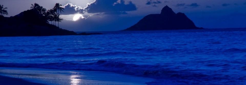 Moonlight's Rhapsody
