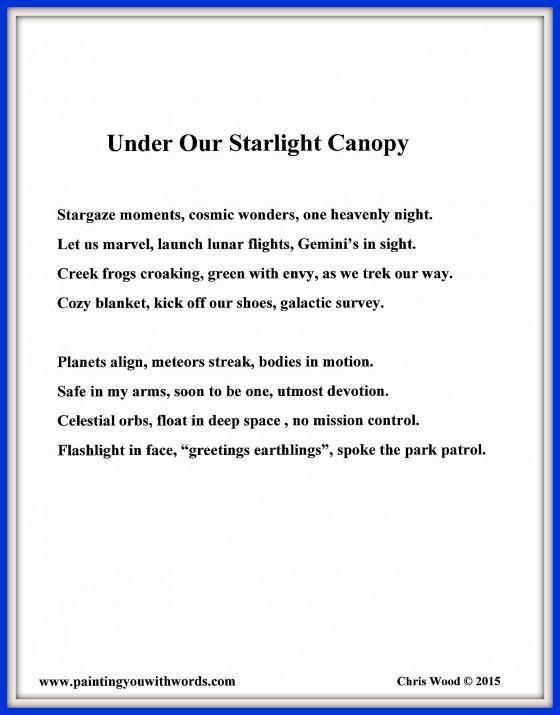 Under Our Starlight Canopy - social media